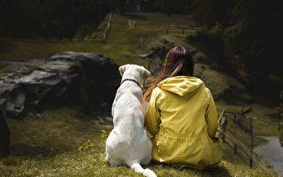 喜歡養狗嗎?也許與你的基因有關