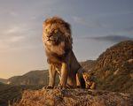 从《狮子王》经典台词 看天选之王的成长