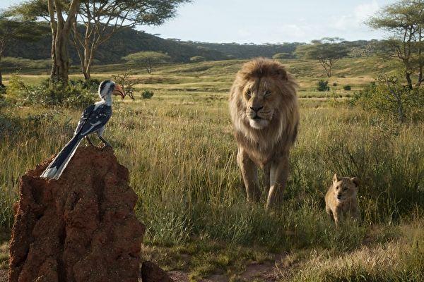《獅子王》電影上映首週 北美票房稱冠