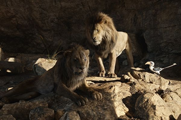 《獅子王》電影2連霸 台美雙週票房冠軍