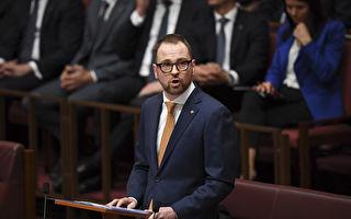 澳洲自由党议员提议 低入者自愿储蓄退休金