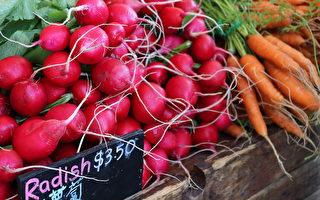 圖:卑詩大學農貿市場夏季提供的有機新鮮健康食材,供社區民眾挑選。(卑大農場提供)