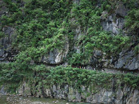 砂卡礑步道是環繞著山壁,在堅石硬岩中用力鑿出的蜿蜒小路。