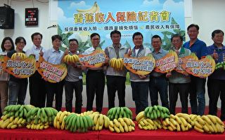 香蕉收入保险上路 高屏5乡镇10月试办