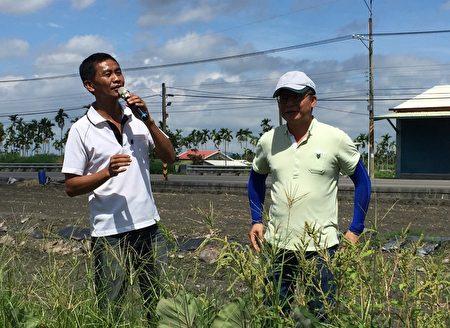 屏东第一位种植产销履历芋头农友简玮良(左),带领游客体验芋头种植、采收等过程。图右为:农粮署南区分署长姚志旺。