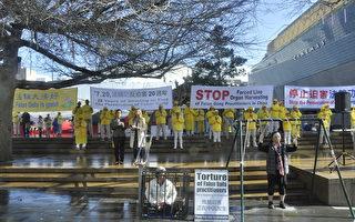 法輪功反迫害20年 新西蘭八方支援