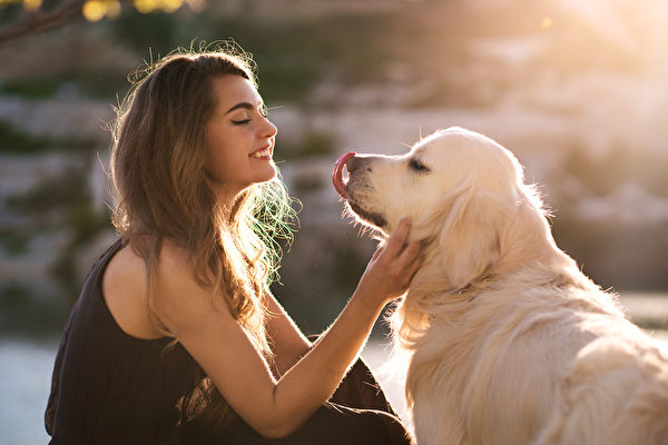 视频:同样耳聋 美国女子和小狗以手语沟通