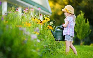 做園藝對身心健康的益處