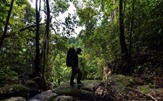 印尼男子拟倒着走800公里 吁重视森林保育