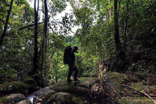 印尼男子擬倒著走800公里 籲重視森林保育