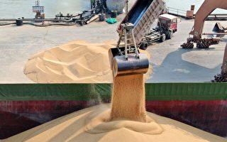中國購買66.4萬噸美大豆 7週以來最大日總量