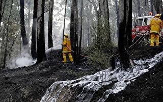 維州消防局加班費暴增 上財年超8千萬