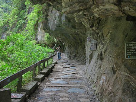 從遊客中心來太魯閣的遊客,第一個停駐點「砂卡礑步道」。