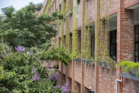 三民国中生态绿墙