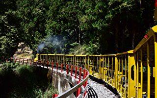 太平山增加平日客运专车 15日首上路
