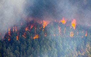 安省西北部山林大火持续蔓延 环境部发空气警告