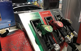 """总理称新西兰人正在被燃油公司""""敲诈"""""""