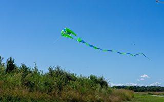 波士頓第17屆風箏文化節 東西同樂