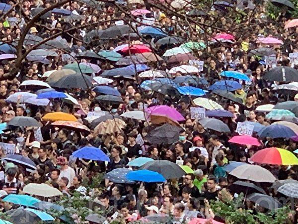 2019年8月17日,香港教育界舉行「守護下一代 為良知發聲」的集會遊行。(駱亞/大紀元)