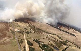 研究:首都行政区 堪培拉内城山火风险最高
