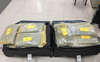 吸收青年境外運毒 警查獲大麻82餘公斤