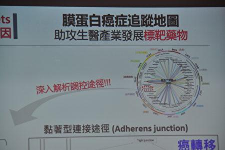 交通大学与台北医学大学合作,研究近两千种膜蛋白对应于十五种癌症,首创膜蛋白癌症追踪地图