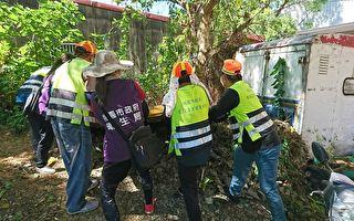 桃市公告登革热防疫 加强居家环境整顿