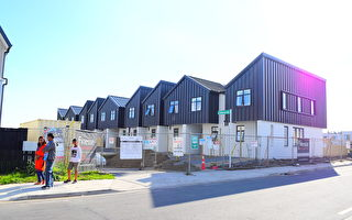 在新西蘭建新房划算嗎?專家如是說