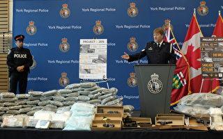 約克警繳毒 逮捕50名毒販包括21華人
