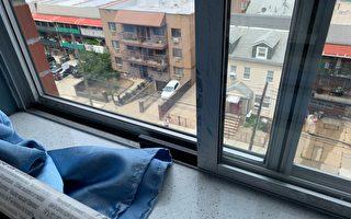 """不同的窗户用不同的防护  房东亡羊补牢装""""窗锁"""""""