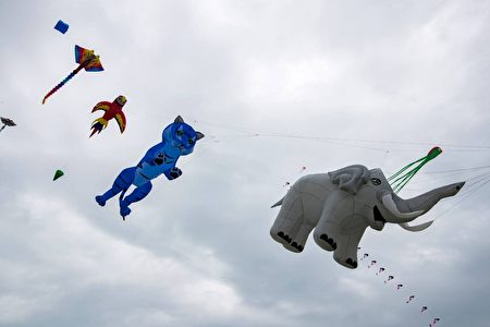 動物造型的可愛風箏