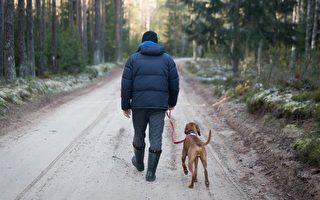 维州无家可归男子与爱犬遇车祸 众人帮助解危难