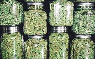 大麻店竟成近邻 日托所吁省府关注