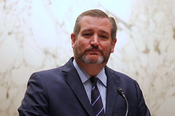 美國聯邦參議員克魯茲(Ted Cruz)。(李辰/大紀元)