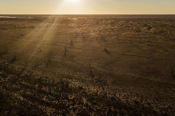 澳洲旱情可能會導致食品價格上漲