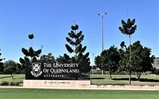 学费飙升前夕 昆士兰申请高教学生倍增