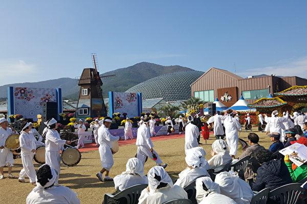 亿朵花海美景 韩国巨济岛花卉庆典即将登场