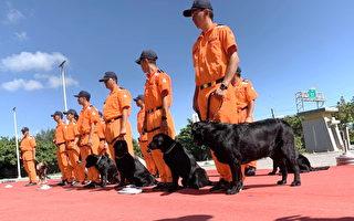 海巡署海巡偵搜犬區隊基地  提升邊境防衛能力