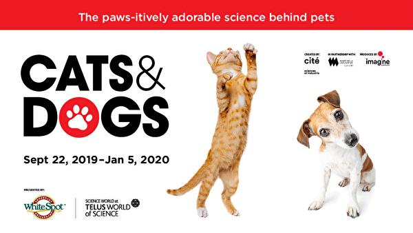 图:温哥华科学馆的全新专题展览《猫狗科学展》即将开幕! 这个互动展览会探索并揭露鲜为人知的动物科学知识。(温哥华科学馆提供)