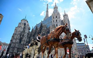 2019全球最宜居城市排名 维也纳再夺冠