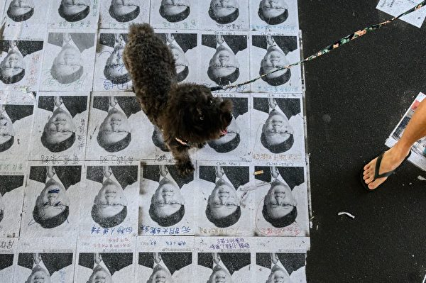 何君堯照片被鋪地上任人踩,成為當地一景。( PHILIP FONG/AFP/Getty Images)