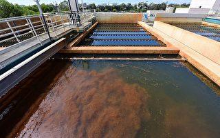 报告:自来水中化学物可致癌 最好用滤水器