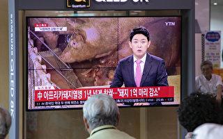两地现非洲猪瘟 韩国展开紧急防疫