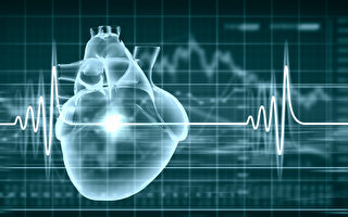 研究發現,從一張心電圖就能判斷充血性心力衰竭(CHF),準確率達百分之百。(Shutterstock)