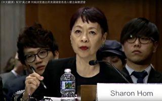 譚競嫦美國國會香港人權法聽證會證詞