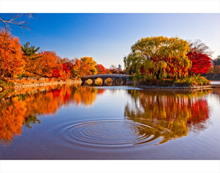 大邱头流公园圣堂池。