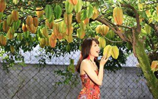 组图:人美心也美 空姐爱心年历推广台湾水果