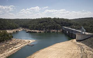 水库蓄水大减 悉尼需降雨1米才能打破旱情