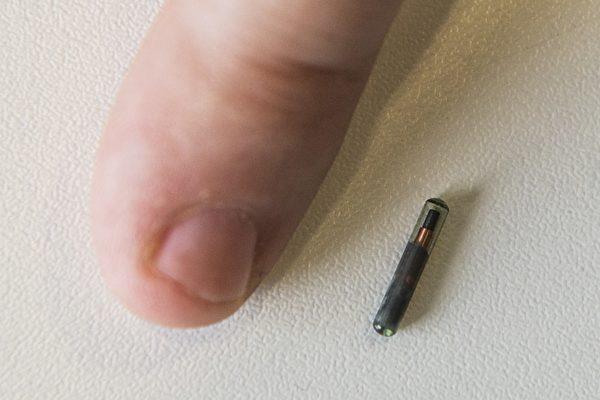 人体植入晶片没有法规约束 威胁员工隐私权