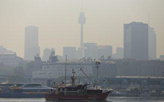 悉尼上空弥漫山火烟雾 引发哮喘健康警报